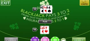 Blackjack Set